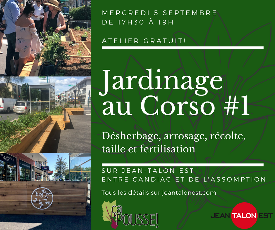 Gardening session at the Corso #1!